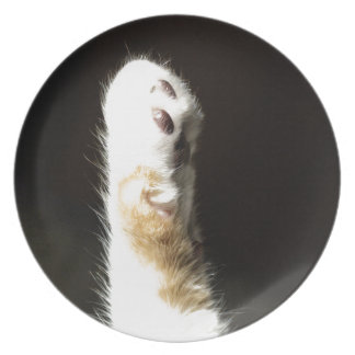The Paw Dinner Plate