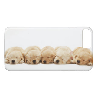 The puppies of the golden retriever iPhone 7 plus case