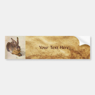 THE RABBIT ( Young Hare ) Bumper Sticker