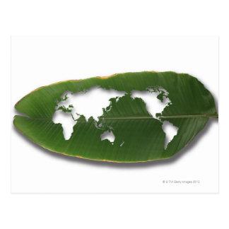 The worm-eaten leaf world map postcard