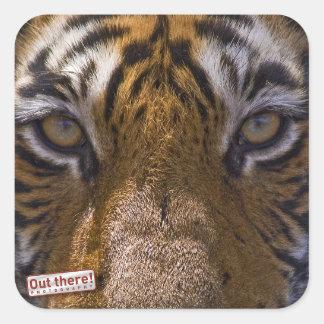 Tiger eyes square sticker