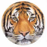 """Tiger Spot"" Tiger Face Watercolor Art Photo Sculpture Decoration"
