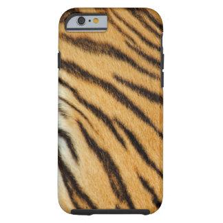 Tiger Stripes iPhone 6 case