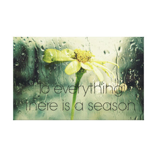 To everything a Season Rain and Flower Window Stretched Canvas Prints