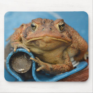 Toadly Awesome! Mouse Pad