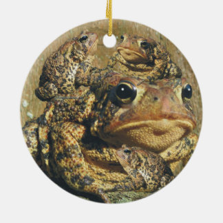 Toadly Awesome Toad Round Ceramic Decoration