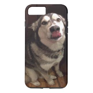 Tongue Teasing Alaskan Malamute Photograph iPhone 7 Plus Case