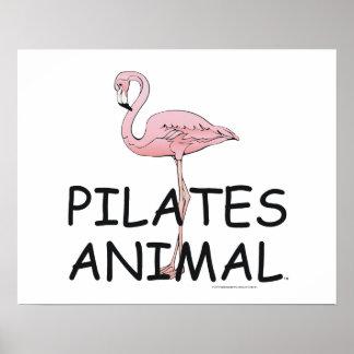 TOP Pilates Animal Poster