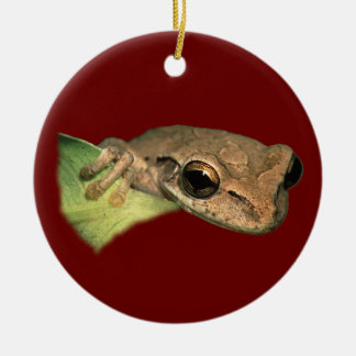 tree frog round ceramic decoration