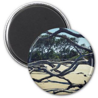 Trees on Jekyll 6 Cm Round Magnet