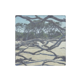Trees on Jekyll Stone Magnet
