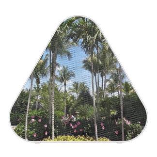 Tropical Coconut Plantation Bonita Springs Florida