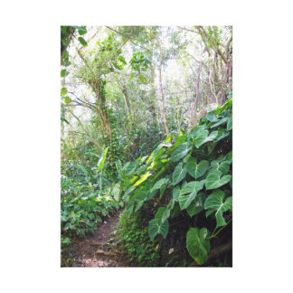 Tropical Pathway Gallery Wrap Canvas
