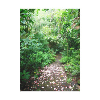 Tropical Pathway Gallery Wrapped Canvas