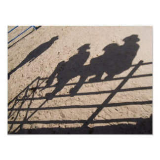 Tucson, Arizona: Shadows of Rodeo competitors Art Photo
