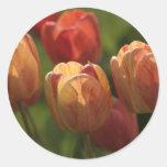 Tulip Blossoms Stickers