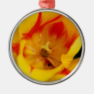 tulip macro Silver-Colored round decoration