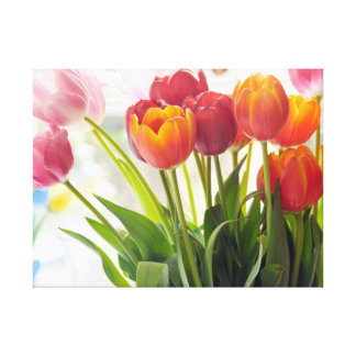 Tulips for Spring Season Gallery Wrapped Canvas