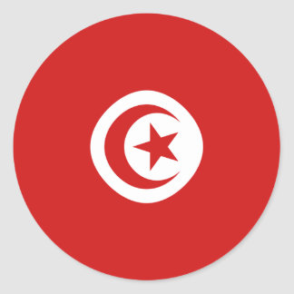 Tunisia Fisheye Flag Sticker