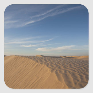 Tunisia, Sahara Desert, Douz, Great Dune, dusk Square Sticker