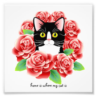 """Tuxedo Cat Roses Print """"home is where my cat is"""" Photograph"""