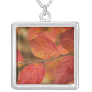 Twig covered with autumn leaves square pendant necklace