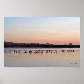 twilight cranes poster