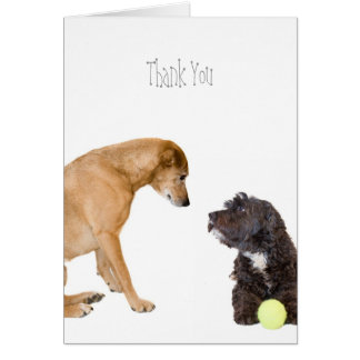 Two Dogs Thank You Card