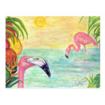 Two Florida Flamingos Watercolor Art Postcard