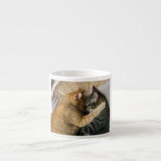 Two Sleeping Tabby Cats Cuddling Espresso Mug