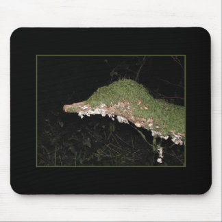 Unusual Vegetation in the Woods. Mouse Pad