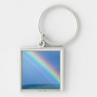 USA, Alaska, Katmai National Park, Grizzly Silver-Colored Square Key Ring