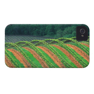 USA, California, Mendocino County, a trellised Case-Mate iPhone 4 Case
