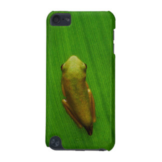 USA, Georgia, Savannah, Tiny Frog On Leaf iPod Touch (5th Generation) Cover