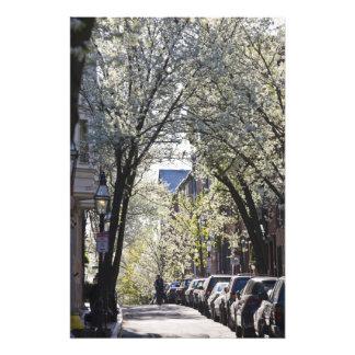 USA, Massachusetts, Boston, Beacon Hill. Photo Art