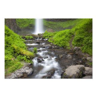 USA, Oregon, Columbia River Gorge, Latourell Art Photo