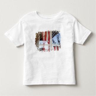 USA, Oregon, Shaniko. Flag in window next to Shirt