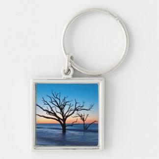 USA, South Carolina, Edisto Island, Botany Bay Silver-Colored Square Key Ring