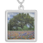 USA, Texas, Marble Falls Paintbrush and Square Pendant Necklace