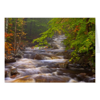 USA, Vermont, East Arlington, Flowing streams Greeting Card