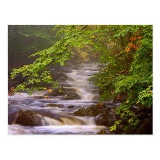 USA, Vermont, East Arlington, Flowing streams Postcard