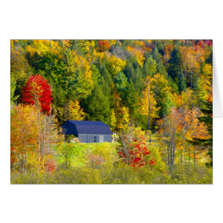 USA, Vermont. Fall foilage along Highway 100. Greeting Card