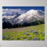 USA, Washington, Mt. Rainier National Park. Poster