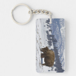USA, WY, Yellowstone NP, American Bison Bison Double-Sided Rectangular Acrylic Key Ring
