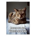Valentine Cat funny poem Greeting Card