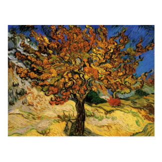 Vincent van Gogh Mulberry Tree Postcards