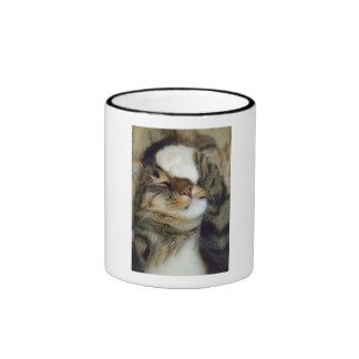 Vinny the Tabby Cat Mug