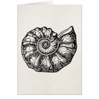 Vintage Ammonite Seashell Fossil Shell Template Note Card