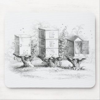 Vintage Bee Boxes Honey Mouse Pad
