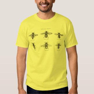 Vintage Bees Bee Honey Scientific Illustration Shirt
